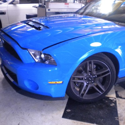 Blue Mustang Cobra Hood